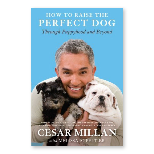 Cesar-Milan-How-to-Raise-the-Perfect-Dog